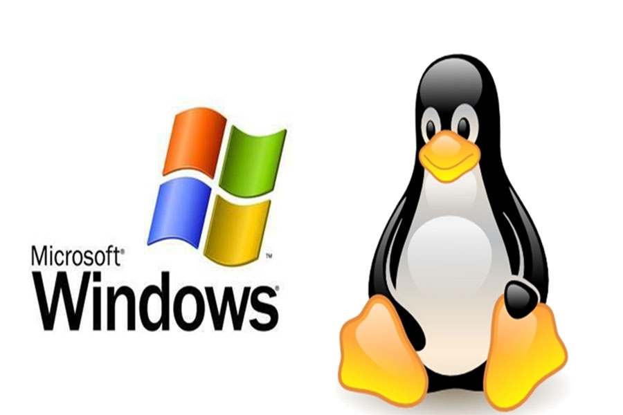 Linux hosting or window hositng